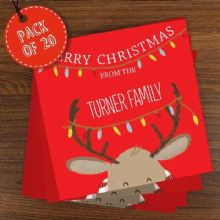 Retro Reindeer Pack of 20 Christmas Cards